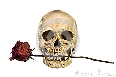rose-sche-de-rouge-dans-des-dents-54252856.jpg